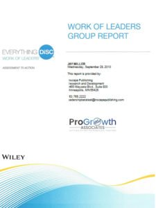 Work of Leader's Group and Facilitator Reports